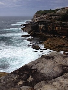 coast walk coogee to bronte