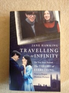 Travelling to Infinity book cover