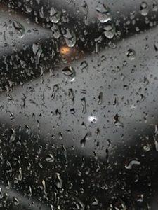 Fascination of summer rain